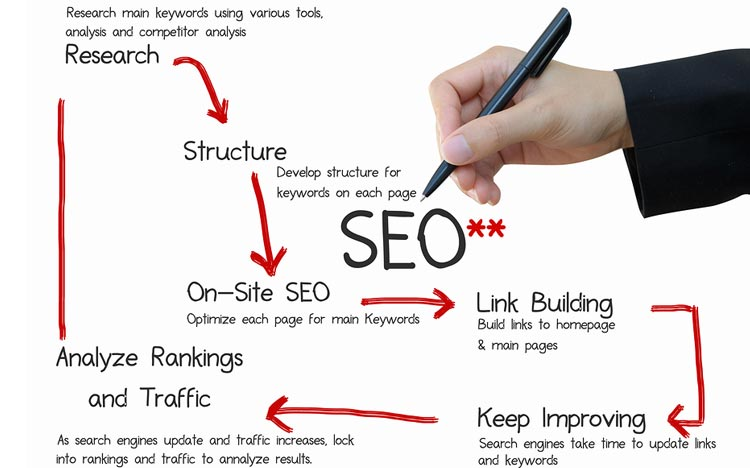 Why is SEO Important for My Business?